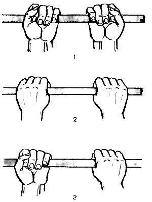 на мышцы-сгибатели рук.