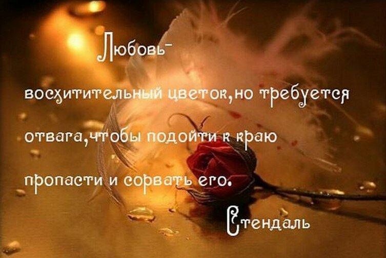 Цитаты из последней любви на земле