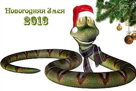 Как встречать новый 2013 год (год Черной Водяной Змеи)?