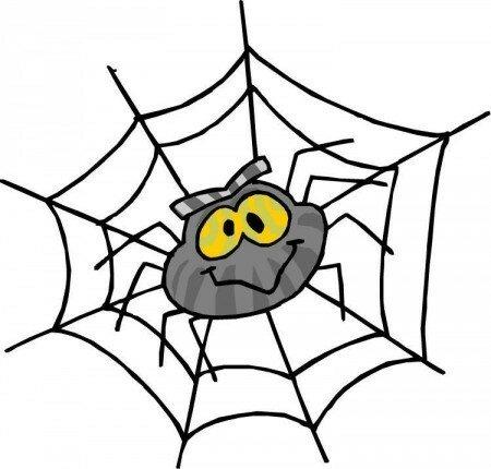 Как избавиться от пауков в доме?