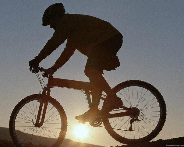 Как недорого купить хороший велосипед?