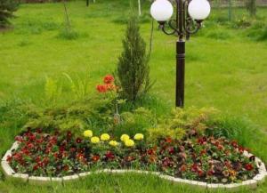 Как самостоятельно сделать клумбу для растений и цветов?