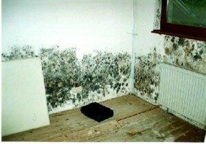 Как избавиться от сырости в квартире?