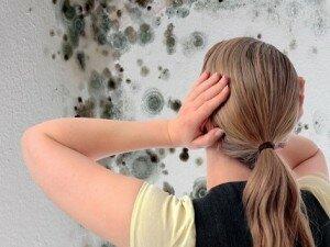 Как избавиться от плесени в квартире?