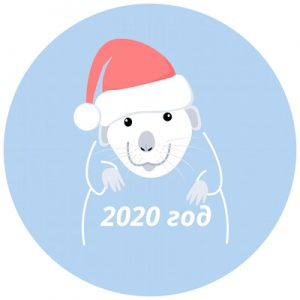 Как встречать Новый год 2020 Белой Металлической  Крысы?