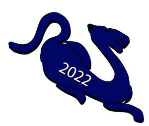 Что подарить на Новый год 2022 Водяного Тигра? Подарки друзьям, родителям, мужу, жене, коллегам, детям, что не стоит дарить