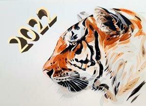 Как встречать Новый 2022 год, где встречать год Тигра, как украсить дом, во что нарядиться, что приготовить поесть?